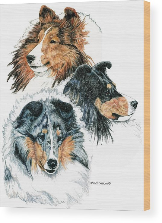 Shetland Sheepdog Wood Print featuring the drawing Shetland Sheepdogs by Kathleen Sepulveda