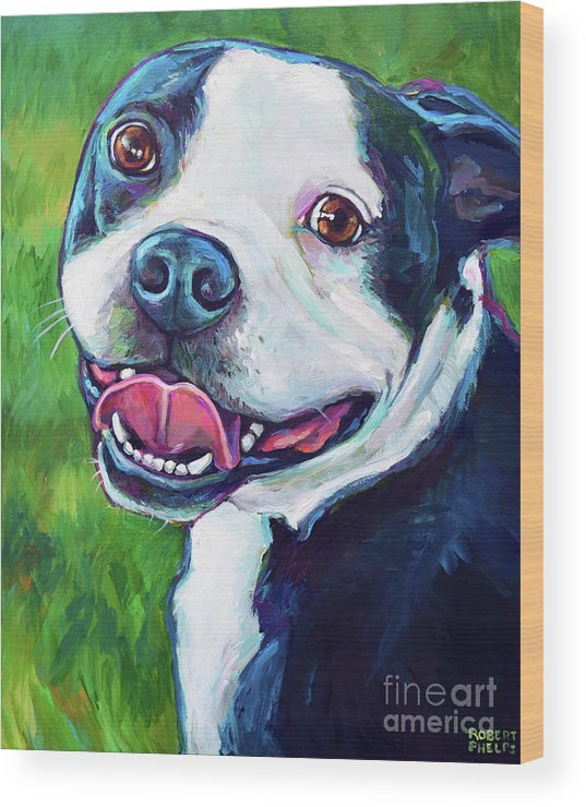 Boston Terrier Wood Print featuring the painting Smiling Boston Terrier by Robert Phelps