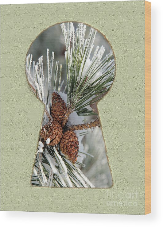 Snow Wood Print featuring the drawing Snowy Pine Keyhole by Steve Edwards