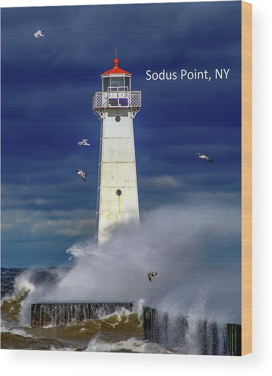 Sodus Point Lighthouse 2 by Mary Courtney