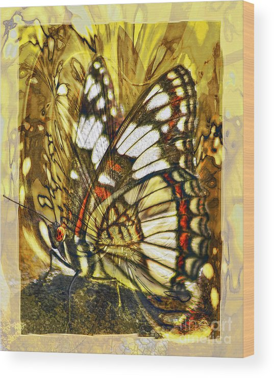 Butterfly Wood Print featuring the digital art Stained Glass Butterfly by Chuck Brittenham