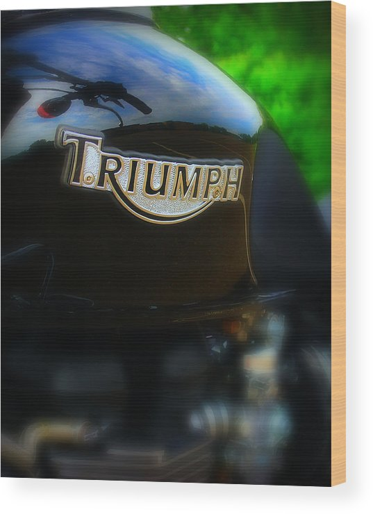 Triumph Wood Print featuring the photograph Triumph by Perry Webster