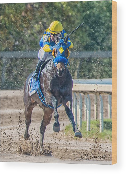 Two Furlongs Wood Print featuring the photograph Two Furlongs by CR Courson
