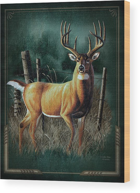 Cynthie Fisher Wood Print featuring the painting Whitetail Deer by JQ Licensing