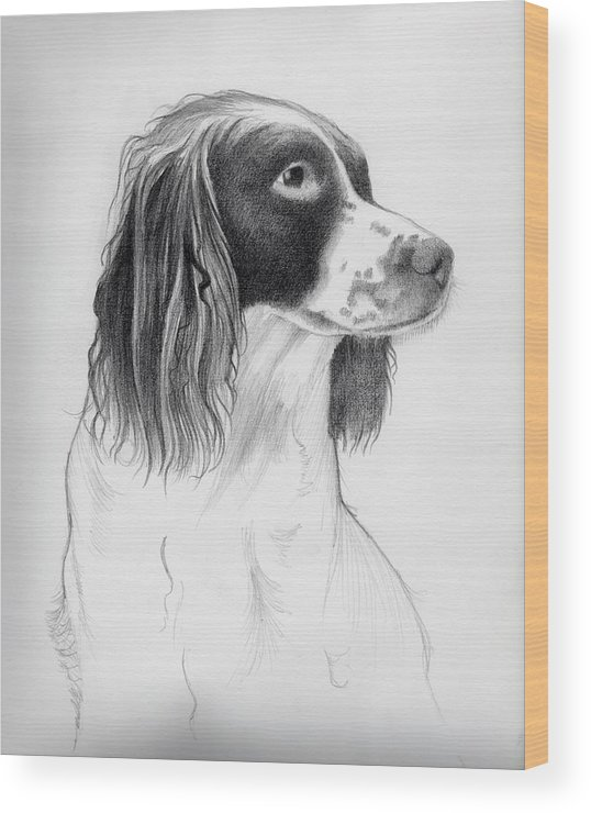 Coco Wood Print featuring the drawing Coco by Ashley Jennings