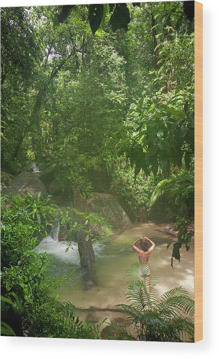 Scenics Wood Print featuring the photograph Mossman Gorge Daintree National Park by Peter Adams