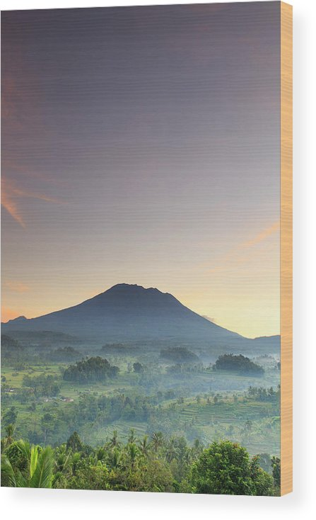 Scenics Wood Print featuring the photograph Indonesia, Bali, Rice Fields And by Michele Falzone