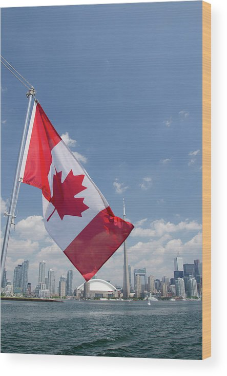 Blue Sky Wood Print featuring the photograph Canada, Ontario, Toronto by Cindy Miller Hopkins