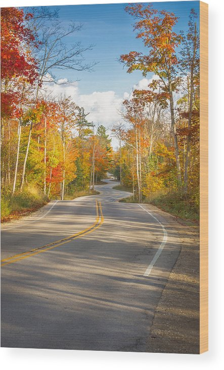Door County Winding Road Wood Print featuring the photograph Autumn Afternoon On The Winding Road by Ever-Curious Photography