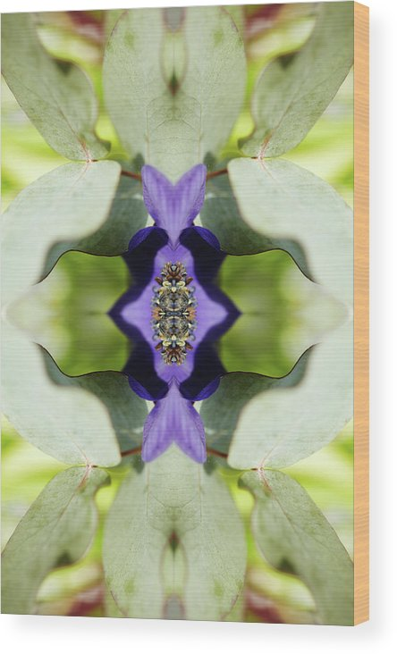 Tranquility Wood Print featuring the photograph Gerbera Flower by Silvia Otte
