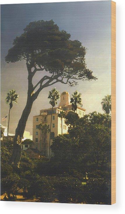 Landscape Wood Print featuring the photograph Hotel California- La Jolla by Steve Karol