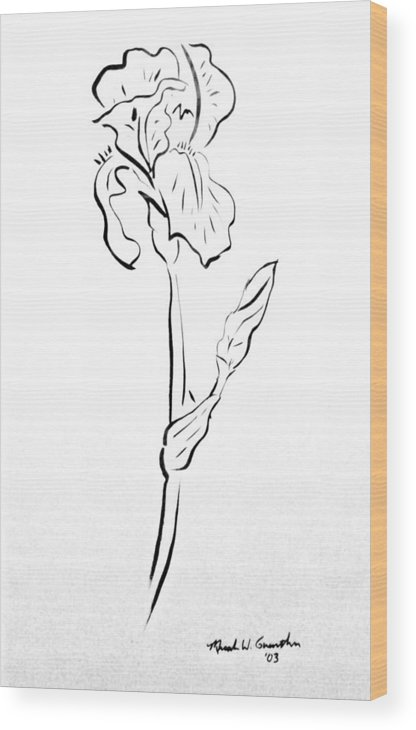 Abstract Wood Print featuring the drawing Iris II by Micah Guenther