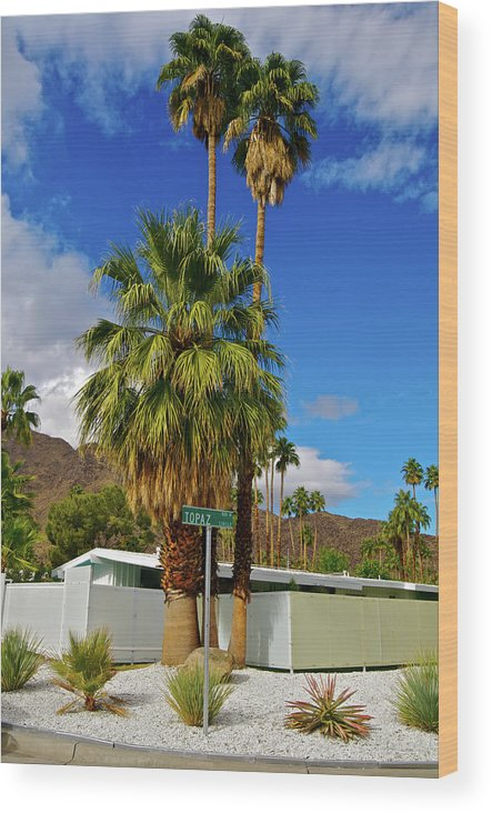 Fan Palm Tree Wood Print featuring the photograph Mountains, Plants & Mid-century Home In by Jaylazarin