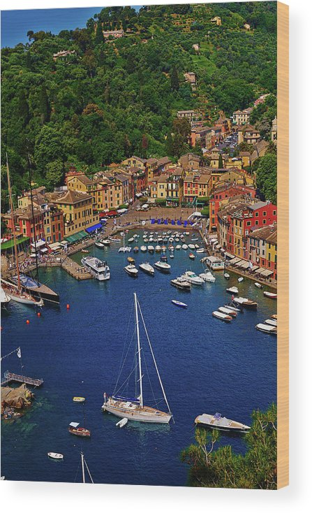 Treetop Wood Print featuring the photograph Portofino by Roman Makhmutov