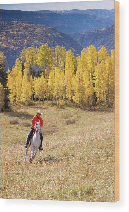 San Juan Mountains Wood Print featuring the photograph Rocky Mountain Cowboy by Amygdala imagery