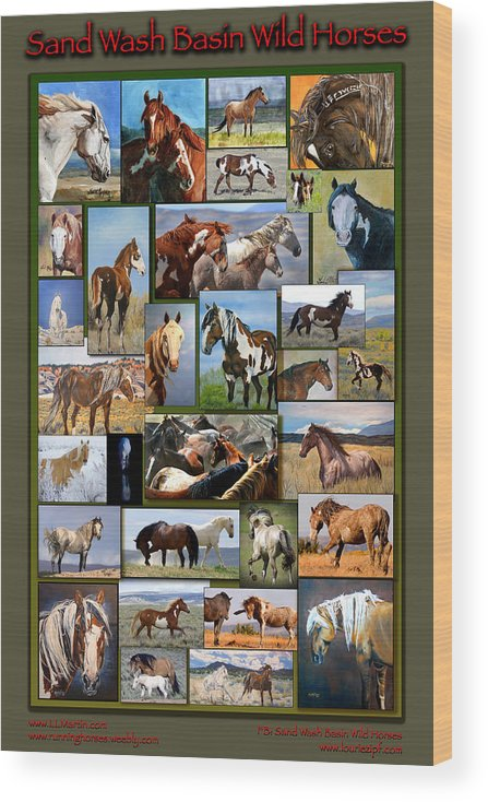 Mustangs Wood Print featuring the photograph Sand Wash Basin Wild Horses by Lourie Zipf