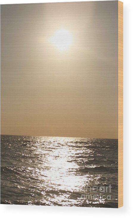 Silver Wood Print featuring the photograph Silver and Gold by Nadine Rippelmeyer