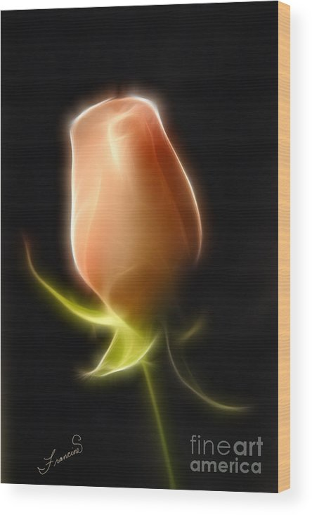 Rose Wood Print featuring the painting The Rose by Francine Dufour Jones