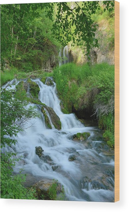 Scenics Wood Print featuring the photograph Waterfall In Spearfish Cayon South by Groveb