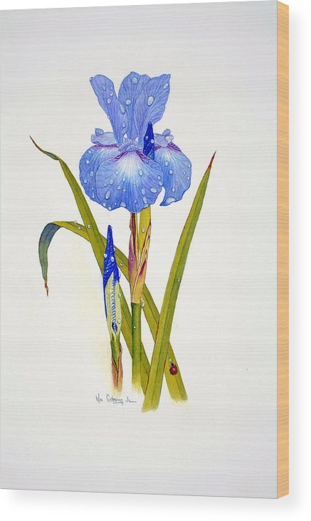 Flowers Wood Print featuring the painting Japanese Iris by Bill Gehring