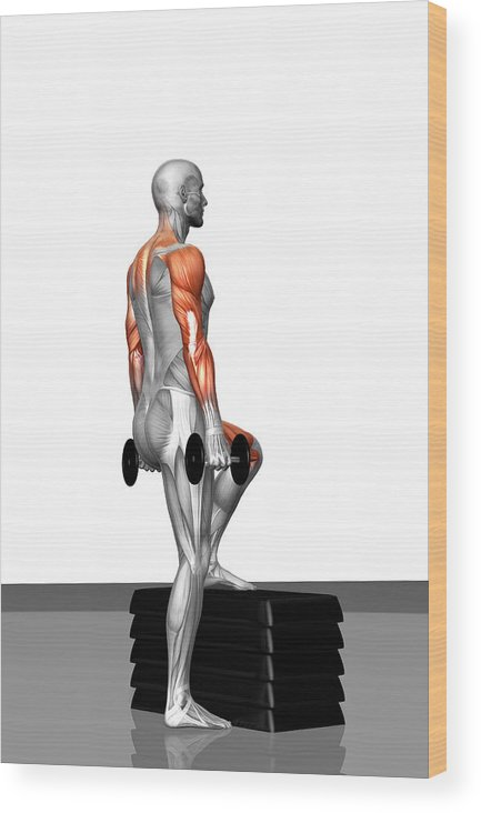 Vertical Wood Print featuring the photograph Dumbbell Step-up Exercise (part 2 Of 2) by MedicalRF.com