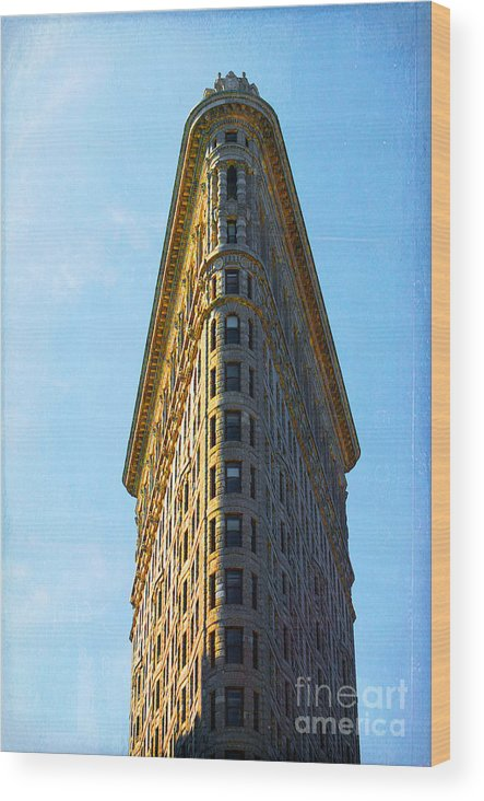 Flatiron Building Wood Print featuring the photograph The Flatiron by Kim Fearheiley