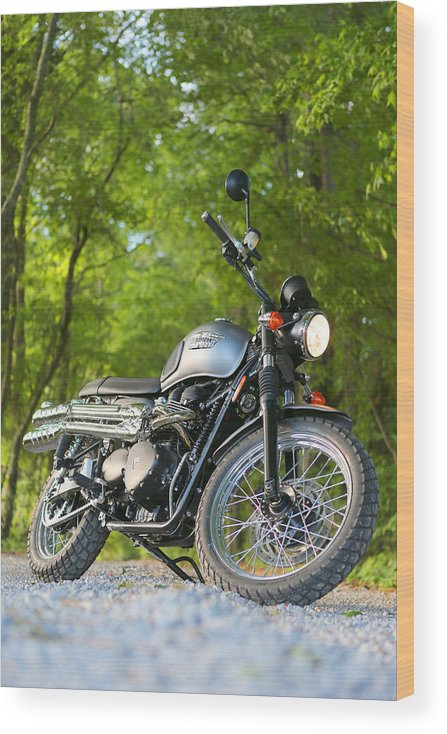 Triumph Wood Print featuring the photograph 2013 Triumph Scrambler by Keith May
