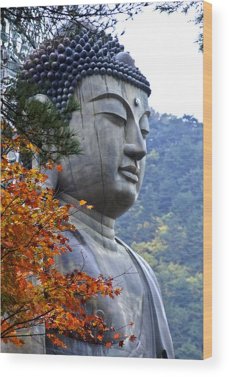 Buddha Wood Print featuring the photograph Buddha in Autumn by Michele Burgess