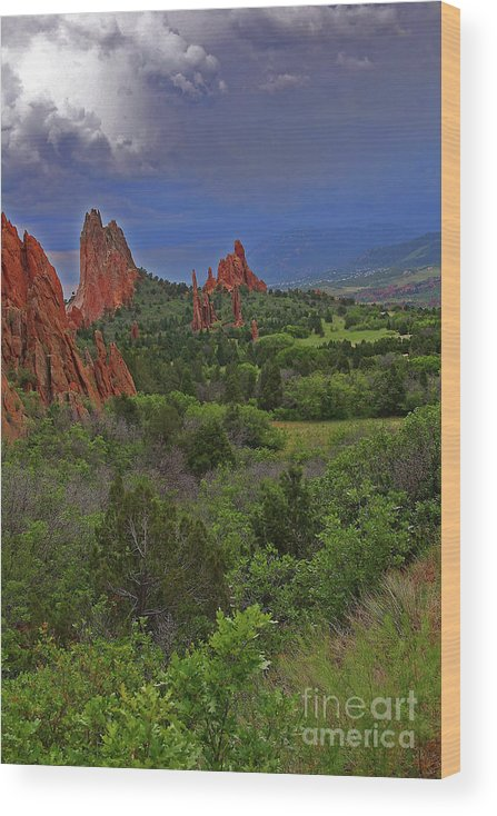 Colorado Wood Print featuring the photograph Garden Of The Gods by Rich Walter