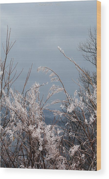 Ice Wood Print featuring the photograph Ice Crystals by Carolyn Postelwait