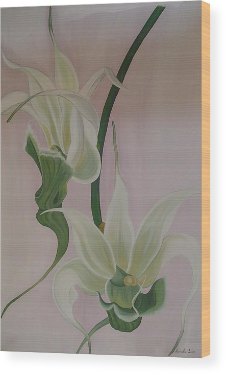 Marinella Owens Wood Print featuring the painting Aeranthes Peyrot Orchide by Marinella Owens