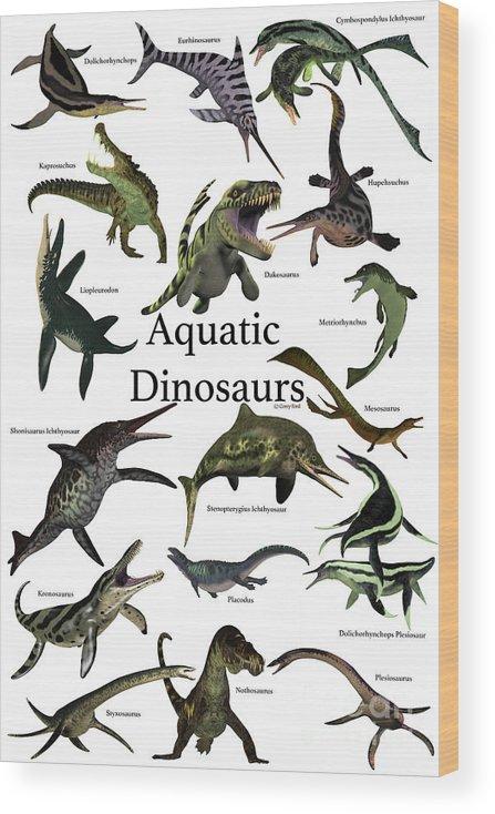 Aquatic Dinosaurs Wood Print by Corey Ford