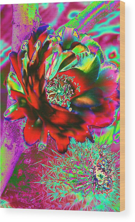 Cactus Wood Print featuring the photograph Big Cactus Flower by Richard Henne