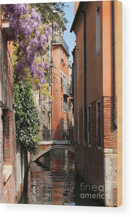 Venice Wood Print featuring the photograph Canal in Venice with Flowers by Michael Henderson