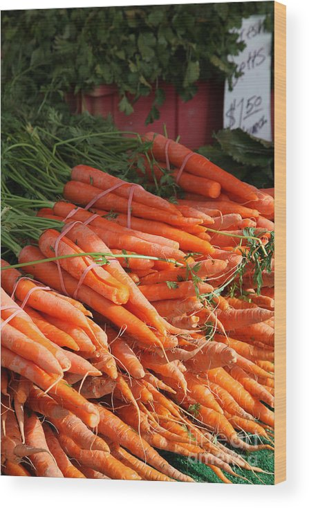 Stilllife Wood Print featuring the photograph Carrot Bounty by Portraits By NC