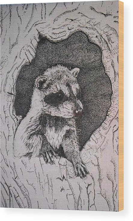 Raccoon Wood Print featuring the drawing Home by Debra Sandstrom
