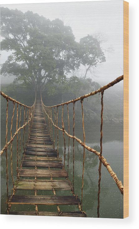 Rope Bridge Wood Print featuring the photograph Jungle Journey 2 by Skip Nall