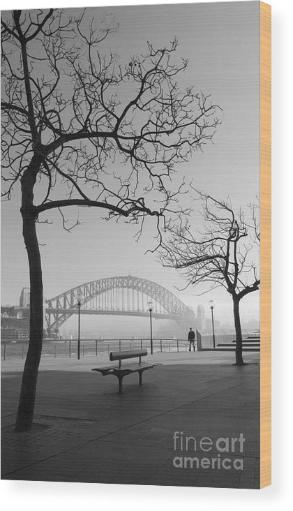 Sydney Harbour Bridge Mist Australia Wood Print featuring the photograph Misty Sydney morning by Sheila Smart Fine Art Photography