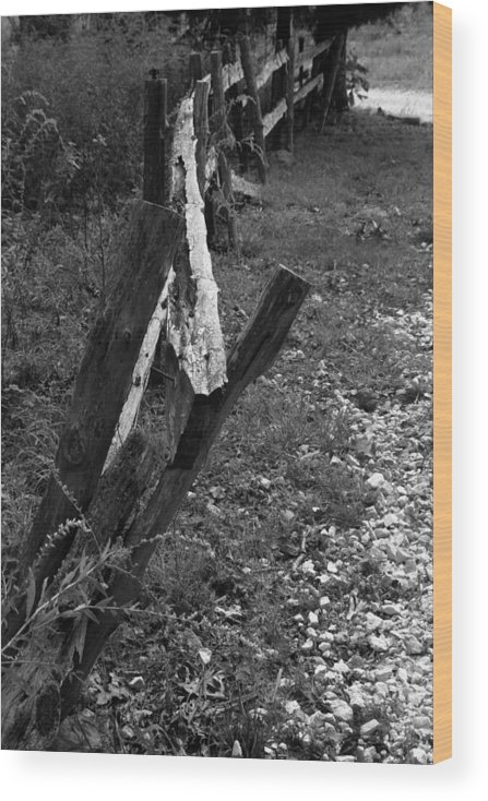 Ansel Adams Wood Print featuring the photograph Momsvisitfence2 by Curtis J Neeley Jr