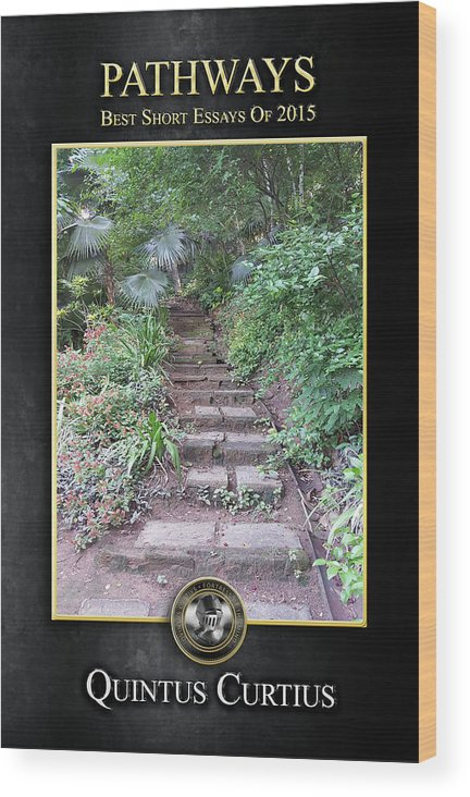Pathways Wood Print featuring the digital art Pathways by Quintus Curtius