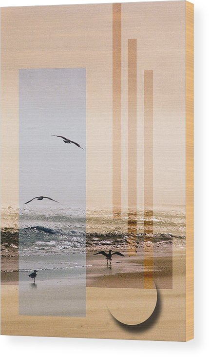Abstract Wood Print featuring the photograph Shore Collage by Steve Karol