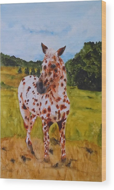 Horse Wood Print featuring the painting Spotted in Hawaii by Jean Blackmer