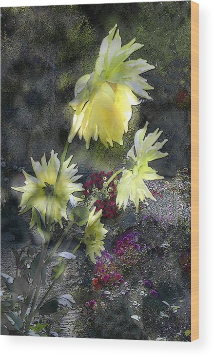 Sun Flower Wood Print featuring the digital art Sunflower Dream by Tom Romeo