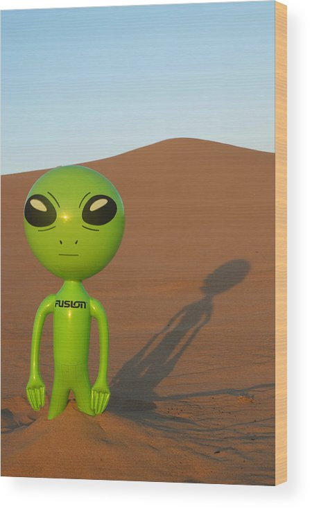Alien Wood Print featuring the photograph Sunset in the Dunes with an Alien by Richard Henne