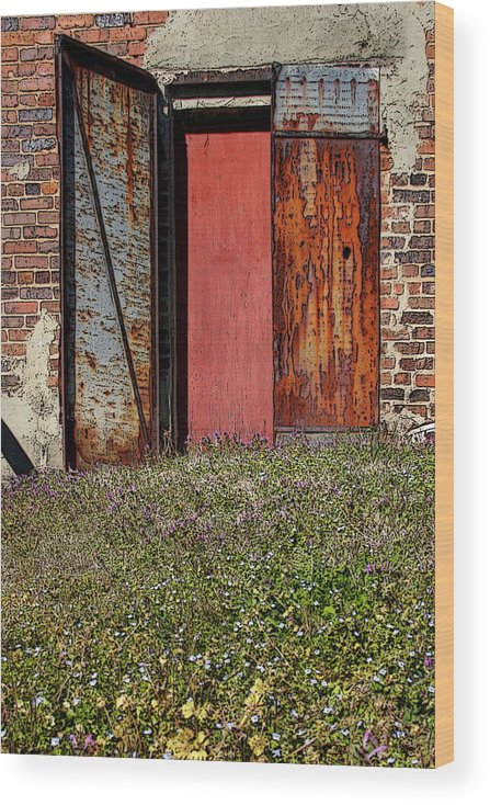 Rust Wood Print featuring the photograph The Door by Alan Skonieczny
