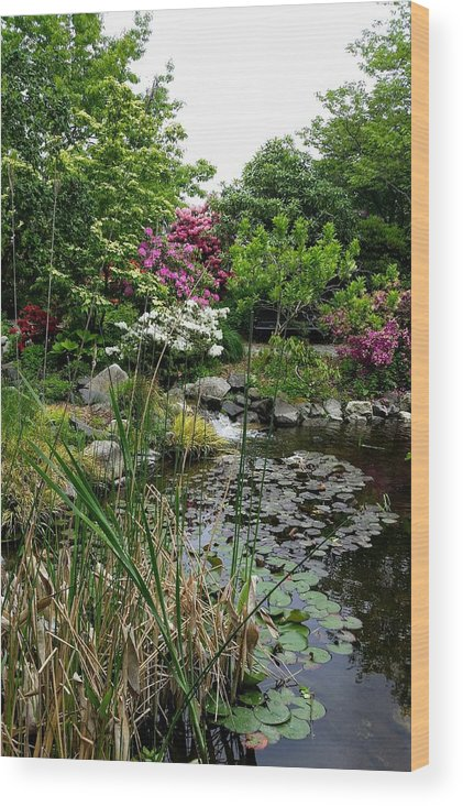 Botanical Flower's Nature Wood Print featuring the photograph The peaceful place 12 by Valerie Josi