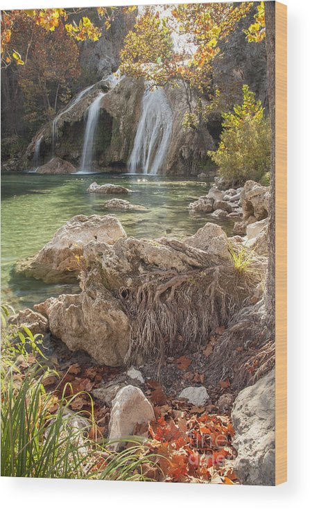 Nature Wood Print featuring the photograph Turner Falls in the Arbuckles by Iris Greenwell