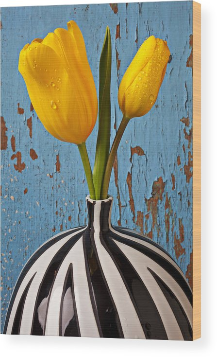 Two Yellow Wood Print featuring the photograph Two Yellow Tulips by Garry Gay