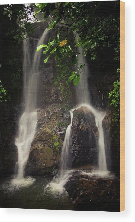 Landscape Wood Print featuring the photograph Yaya Waterfalls in Winter by Iris Greenwell