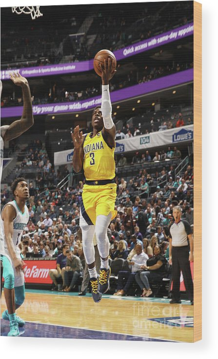 Nba Pro Basketball Wood Print featuring the photograph Indiana Pacers V Charlotte Hornets by Brock Williams-smith